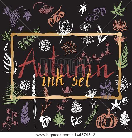 Set of hand painted ink autumn leaves, flowers, herbs and berries. Great for seasonal greeting cards. Artwork for your design.