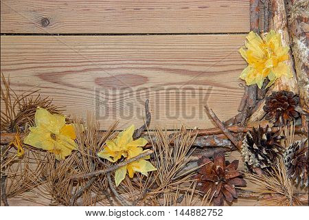 Christmas and New Year decoration composition on wooden background. Top view of boards lined made of fir branches needles yellow daffodil flowers dried terry and cones with place for your text