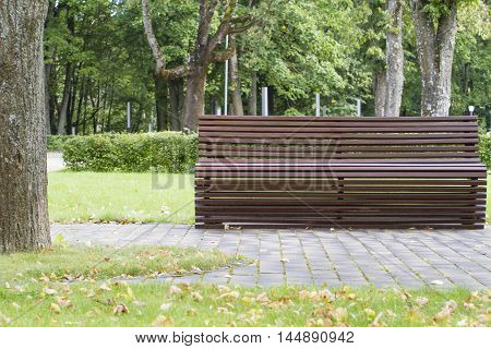 Modern curve shaped brown wooden bench under old and tall trees in the park as background image