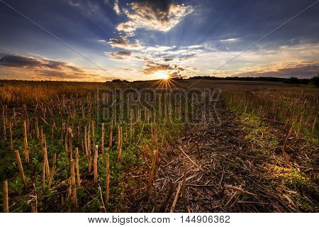 Stubble field at sunset. Moravian landscape Sudice.