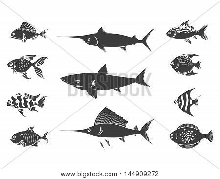 Grey fish silhouettes set isolated on white background. Vector illustration