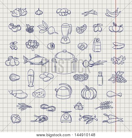 Popular hand drawn fruits berries vegetable and grocery objects. Ball pen imitation vector