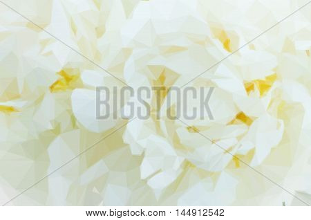 Low poly illustration Bouquet of fresh white peony flowers macro background
