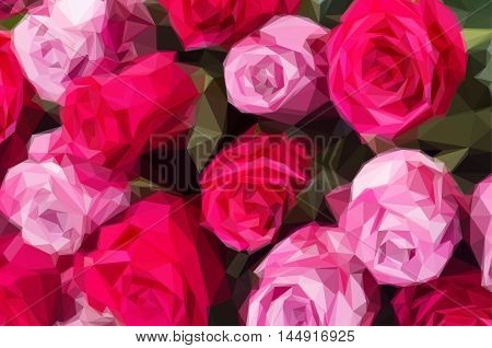 Low poly illustration bunch of blooming fresh dark and light pink roses close up