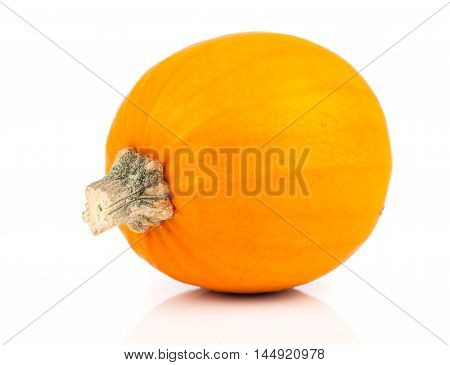 one yellow pumpkin isolated on white background