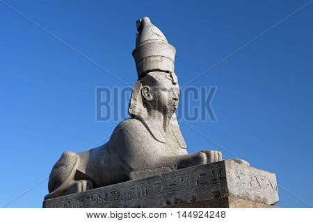 statue of sphinx at the Universitetskaya Embankment, was brought from Egypt, Saint Petersburg, Russia