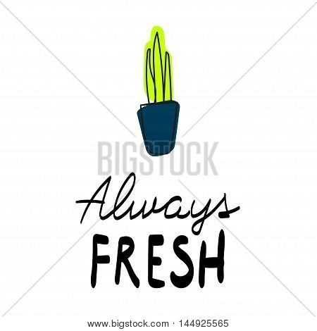 Always fresh Vector illustration Card with green plant in the blue pot with the inscription Always fresh
