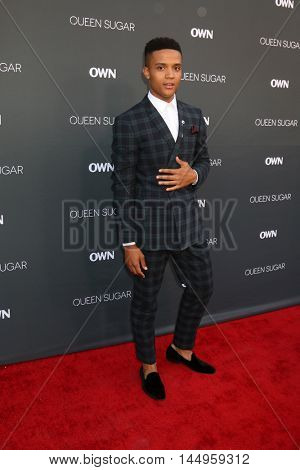 LOS ANGELES - AUG 29:  Nicholas Ashe at the Premiere Of OWN's