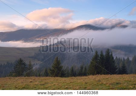 Autumn Landscape with mist in the mountains. Fir forest on the slopes. Carpathians, Ukraine, Europe