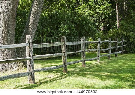Old weathered wooden fence in park in summer day