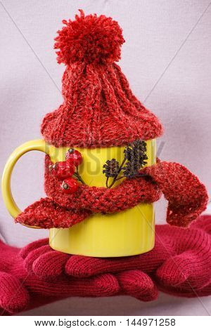 Hand Of Woman In Gloves Holding Cup Of Tea With Woolen Scarf And Cap