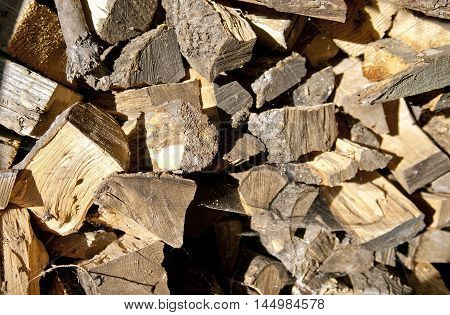 Firewood background - chopped firewood on a stack with spider's webs sunny