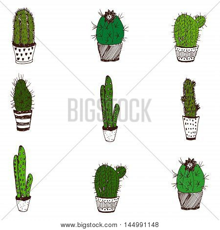 Raster sketchy set of partly colored cactuses isolated on white. Illustration for floristry and flora sources design element wallpaper textile and cover image.