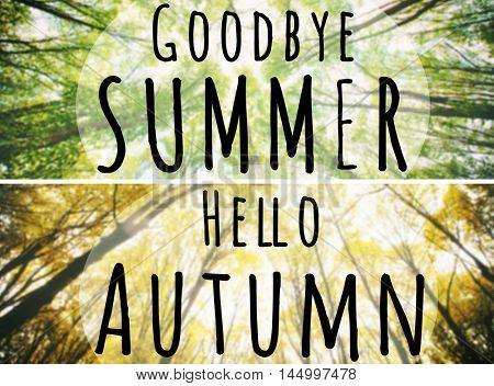 Hello Autumn, goodbye Summer