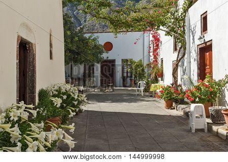 Flowers in Panagia Episkopi Church in Santorini island, Thira, Cyclades, Greece