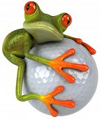 pic of amazonian frog  - Frog and golf - JPG