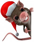 picture of gerbil  - Santa mouse - JPG