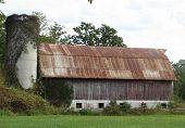 Rusty-Roofed Barn