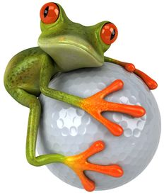image of amazonian frog  - Frog and golf - JPG