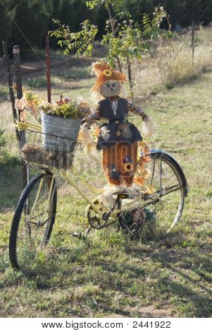 Bicycle Ride In The Fall Of Year