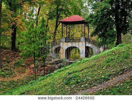 Chinese bridge. Dendropark