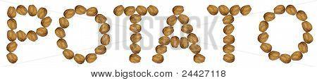 Potato, Alphabet