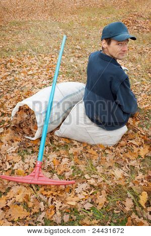 A Man Collects In A Grove Of Leaves