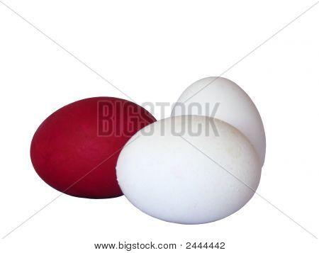 An Eggs
