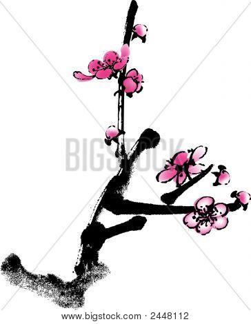 Plum Flower 1.Eps