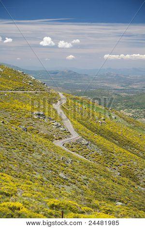 Gredos Mountains Rural Road