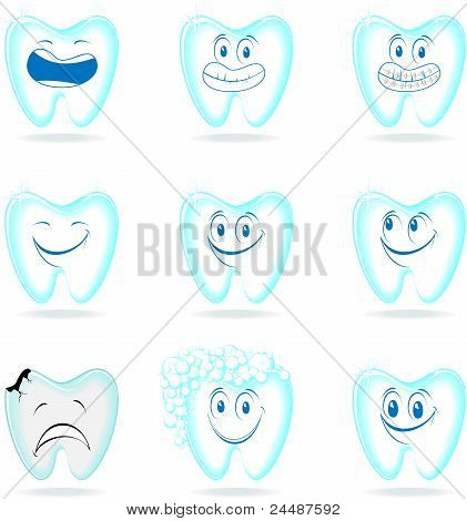 dental characters molar