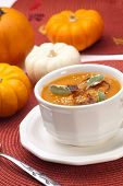 Spicy Roasted Pumpkin Soup poster