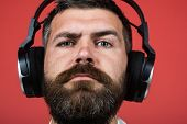 Closeup Portrait Of Man With Headphones Listening To His Favorite Song. Very High Quality Sound - Se poster