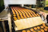 Automatic Bakery Production Line With Sweet Cookies On Conveyor Belt Equipment Machinery In Confecti poster