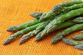 Fresh Asparagus Officinalis Isolated On Orange Background. Raw Garden Asparagus Stems. poster