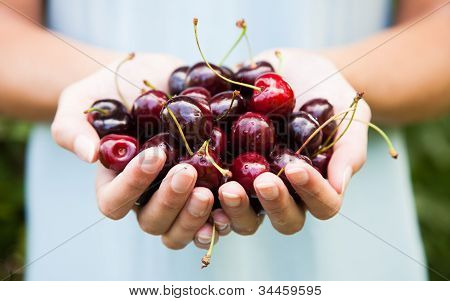 Handful Of Cherries