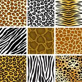 picture of tigers  - animal skin seamless pattern set - JPG