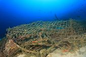 Ghost net. Abandoned fishing net on coral reef polluting ocean  poster