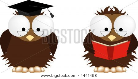 Wise Owls Teaching And Reading
