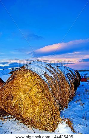 Hay bale and sunset