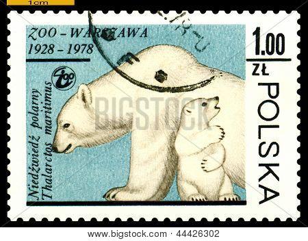 Vintage  Postage Stamp. Polar Bear.