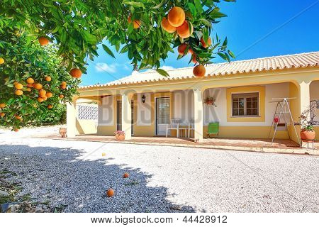 A Typical House For The Summer Vacation With Orange Garden.