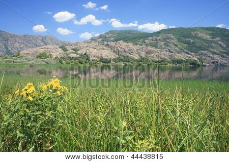 Vegetation of the Natural Park of Lake Sanabria, Zamora
