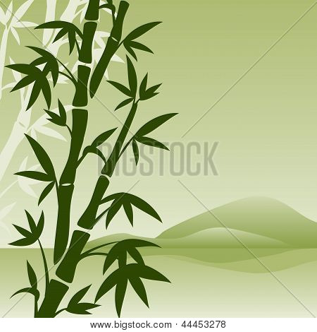landscape with bamboo