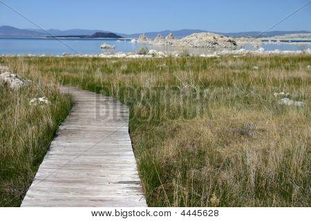 Mono Lake Boardwalk