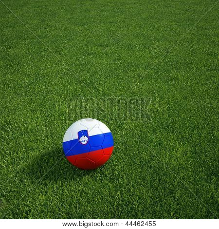 3D-Rendering eine slowenische Soccerball lying on grass