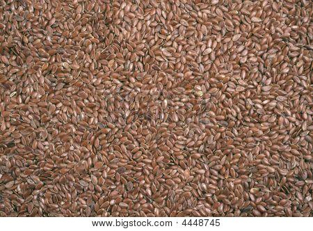 Closeup View Of Flix Seeds  Background
