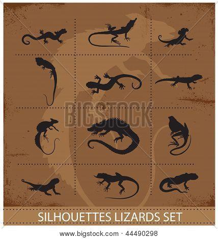 collection reptiles and amphibians symbols set