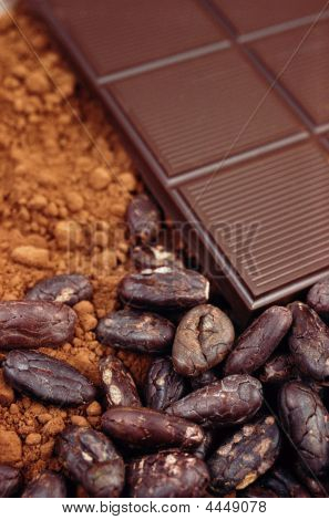 Bar Of Chocolate Cocoa Beans And Powder