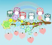 image of owl eyes  - owls birds and love heart tree branch - JPG